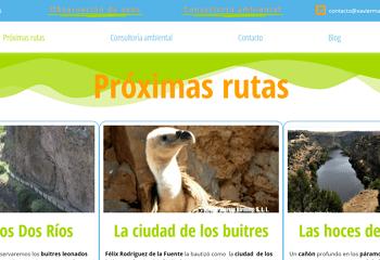 Xavier Martín Rutas ornitológicas y observación de aves